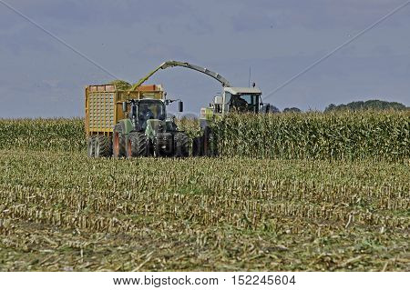 YSBRECHTUM, THE NETHERLANDS - OCTOBER 12, 2016: A Claas chopper harvesting a maize field in beautiful sunny weather.