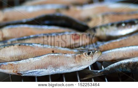 The typical blue fish sardine is cooked on the grill or in the oven