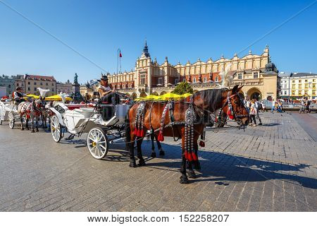 KRAKOW, POLAND - September 16, 2016: Horse carriages at main square in Krakow in a summer day, Poland