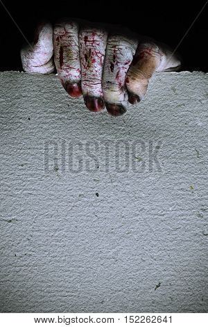 closeup of the scary hand of an undead man holding a blank signboard