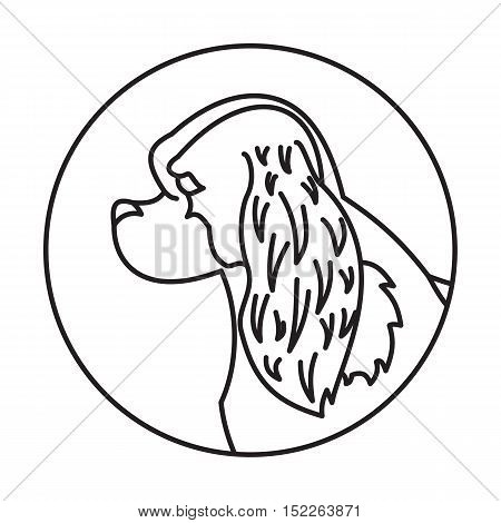 Linear emblem with dog cavalier charles king spaniel. Vector illustration