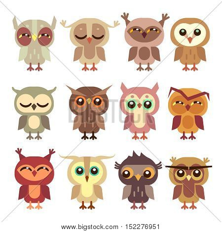 Funny cartoon owls vector set. Wild bird predator, little owlet illustration