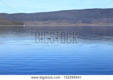 Lake Vico in Lazio, the province of Viterbo, Italy.