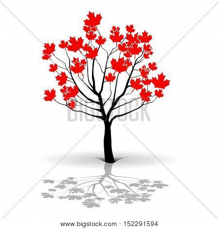Illustration maple tree as a symbol of Canada.