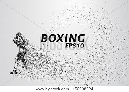 Boxer of the particles. The boxer is made of little circles. The boxer in the pose of attack.