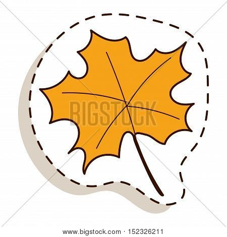 autumn leaf on white background. Autumn leaf autumn season and nature color plant foliage. Yellow autumn leaf bright decoration and design natural season colorful flat leaf.