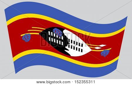 Swazi national official flag. Patriotic symbol banner element background. Correct colors. Flag of Swaziland waving on gray background vector