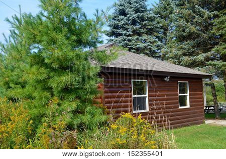 Beautiful log cabin in the woods in summer