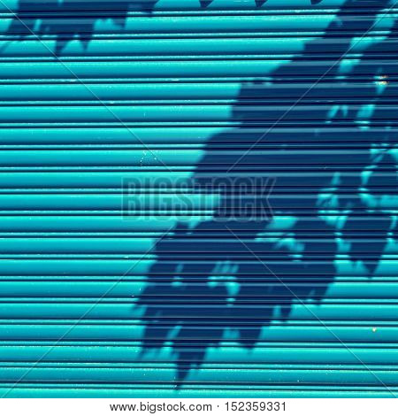 Turquoise metal roll up doors with shadow of tree.