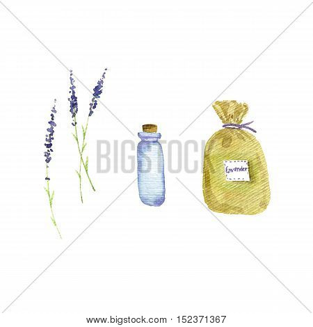 hand drawn lavender set, blooming plants, sachet and glass bottle, watercolor illustration