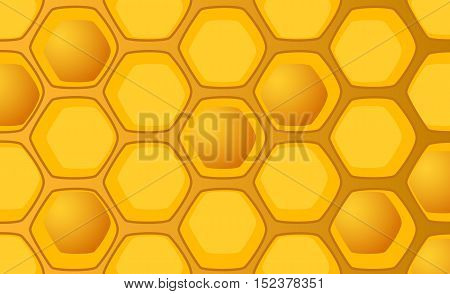 Honeycomb vector illustration with full and empty combs. Handdrawn honeycomb pattern for background. Bright yellow honey comb for backdrop web design food product package