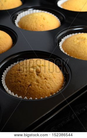 Freshly Baked Cup Cakes In Bun Tin With Paper Cases