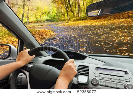 car windscreen with country autumn asphalt road, view inside out