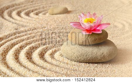 Sand flower lily and spa stones in zen garden. Spa concept