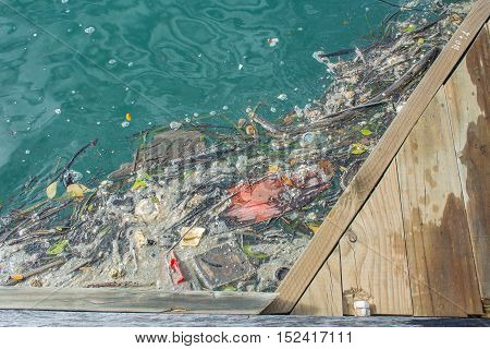 Environmental problem of waste water pollution in the ocean