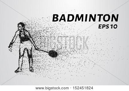 Badminton of particles. Badminton consists of small circles. Badminton into smaller molecules.