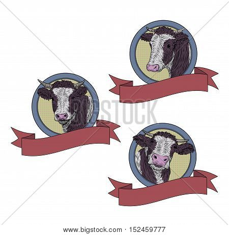 Cow calf bull cute muzzle face set collection variation sticker icon. illustration isolated white background