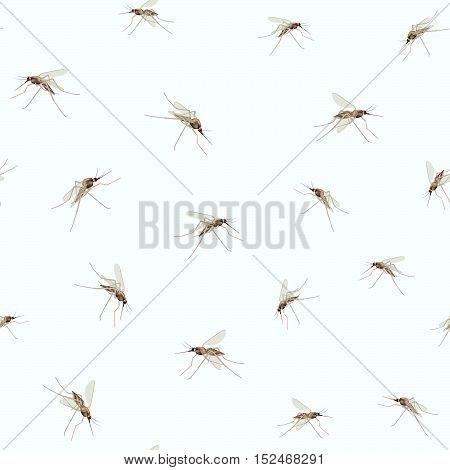 Mosquitos Seamless wildlife texture. Mosquitos isolated on blue sky background. Incest tropical fauna seamless pattern. poster