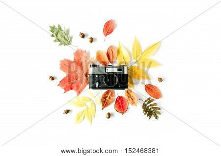 Vintage retro camera and autumn fall floral frame with acorn maple leaf. Flay lay top view