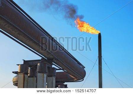 Gas torch. Burning of associated gas at oil production.