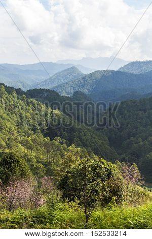 View doi luang chiangdoa form Loa Woo, Whianghaeng Chiangmai Thailand