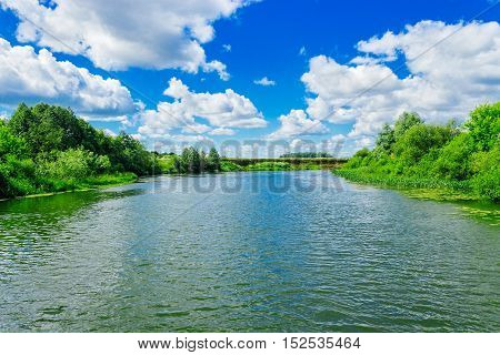 Small river with bushes on the bank in summer day