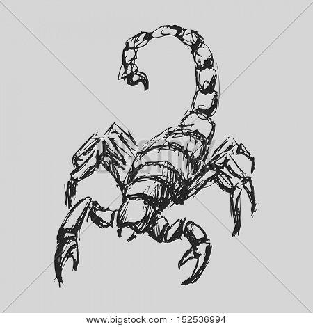 Scorpio Astrological zodiac symbol. Horoscope sign background. Sketch style. Vector Illustration.