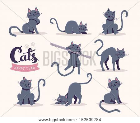Vector collection of illustration of cute gray cat in various poses and text with cat paw prints on white background. Flat style design for greeting card poster web site banner sticker logo