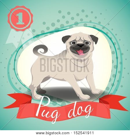 Vector illustration of happy pug dog. Best in show dog champion. Half tone background with red ribbon and medal.