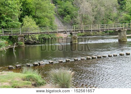 A Set of Stepping Stones and a River Wooden Bridge.