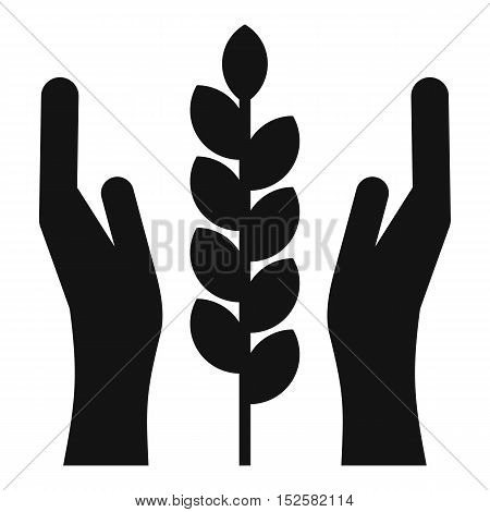 Hands and ear of wheat icon. Simple illustration of hands and ear of wheat vector icon for web