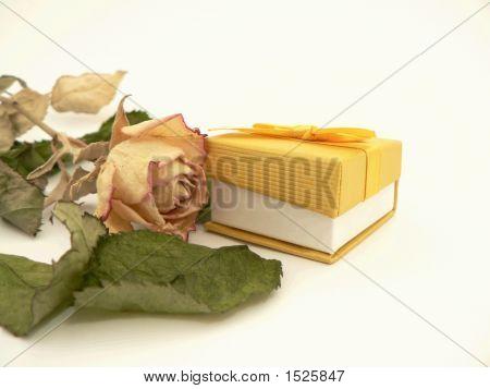 Pack,Rose
