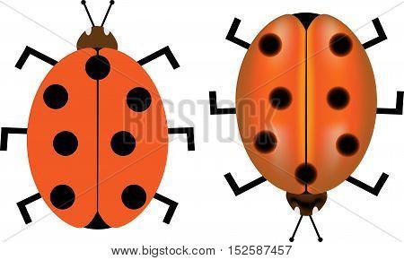 ladybird , ladybug , Ladybird vector illustration