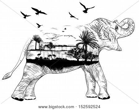 Vector Double exposure African elephant for your design wildlife concept