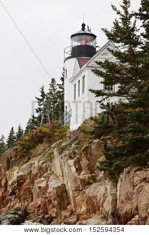 View of Bass Harbor Head Light in Acadia National Park, Maine.