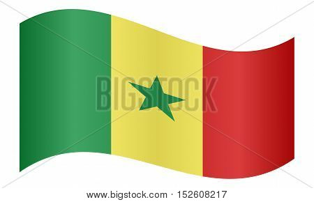 Senegalese national official flag. African patriotic symbol banner element background. Correct colors. Flag of Senegal waving on white background vector illustration