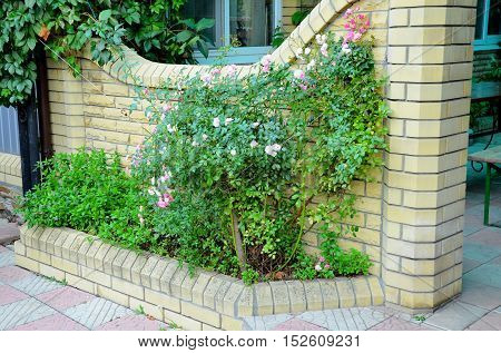 A flower bed , built of bricks and was attached to a brick wall .
