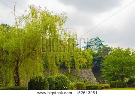 Nagoya Castle High Above Rampart Trees