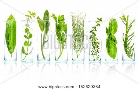 Close Up Bottles Of Essential Oils With Fresh Herbs . Sage, Rosemary, Sweet Basil Leaves ,lemon Thym