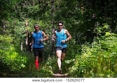 Trail running athletes moving through the forest