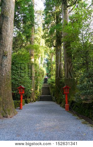 Stairs Leading Up To The Hakone Shinto Shrine