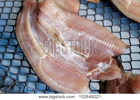 Striped Snakehead Fishes Dried In The Sun For Sell In Open Market, Thai Market Store.
