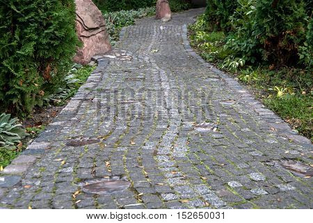 brick stone path in the sumer park