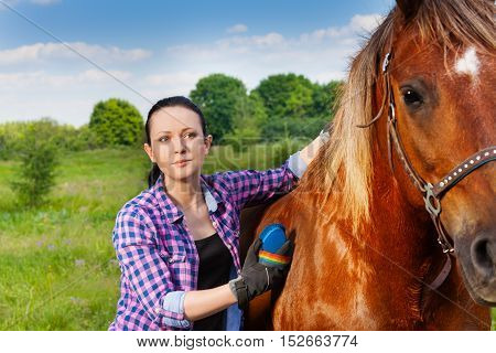 Portrait of young woman brushing beautiful chestnut brown horse in summer field