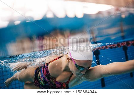 Underwater shot of woman swimming in pool. Young female swimming the front crawl in a pool.
