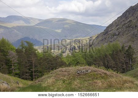 View towards Helvellyn, Lake District, Cumbria, England
