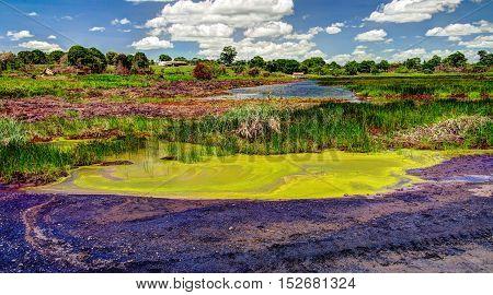 Bitumen and asphalt Pitch lake in Trinidad island Trinidad and Tobago