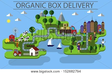 organic box delivery infographic in flat style