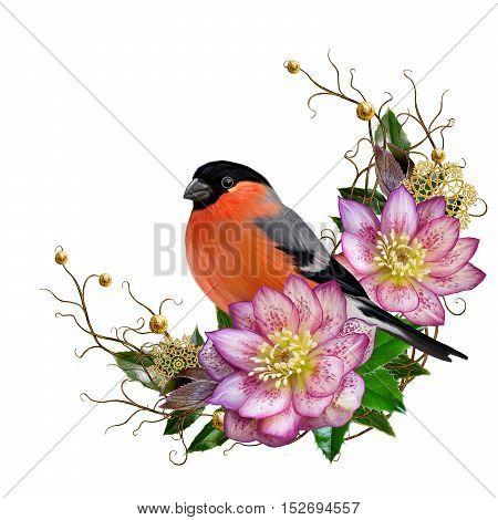 The bright red bird bullfinch pink flower hellebore weaving from twigs gold ornaments winter background Christmas composition. Winter background. Isolated.