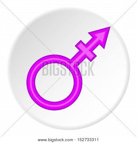 Transgender sign icon. Cartoon illustration of transgender sign vector icon for web